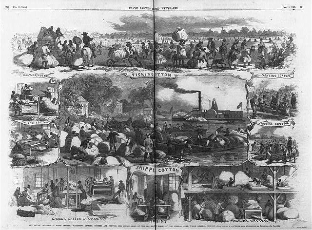 [Composite of scenes of] Our cotton campaign in South Carolina - gathering, ginning, packing and shipping the cotton crops of the Sea Island Royal, by the Federal Army, under General Sherman