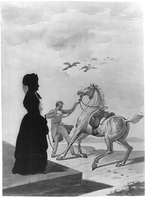 [The lady and the festive horse]