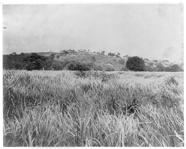 San Juan Hill, the long grass through which General Hawkins' men made their famous charge