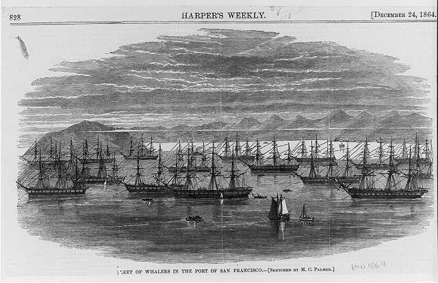 Fleet of whalers in the port of San Francisco