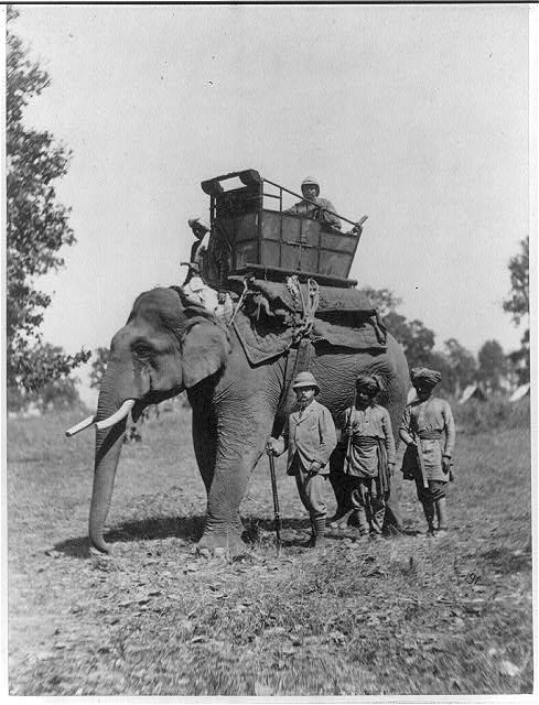 H.R.H. the Prince of Wales, and elephant, Terai