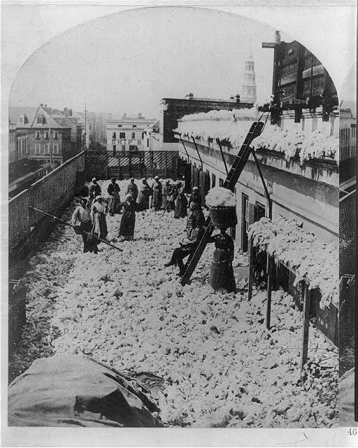 Cotton warehouse, drying cotton, Charleston, S.C.