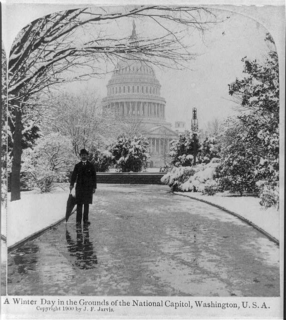 A winter day in the grounds of the National Capitol, Washington