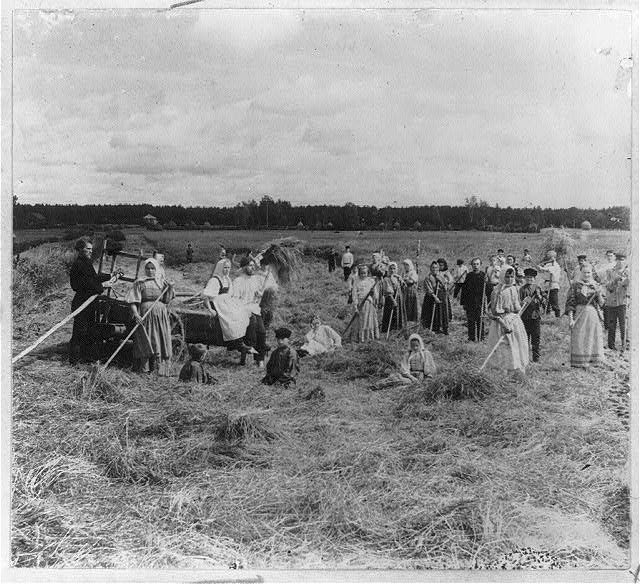 Peasants working in a field.  Circa 1905-1915