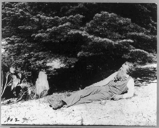 [John Muir, full-length portrait, facing left, lying on rock with trees in background]