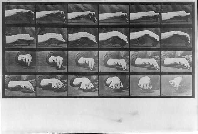 Animal Locomotion: [24 frames of hand drawing chalk circle, plate 532]