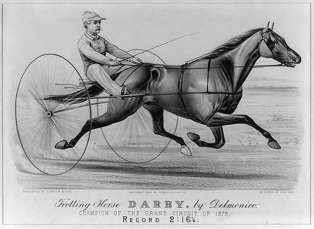 Trotting horse Darby, by Delmonico: champion of the grand circuit of 1879