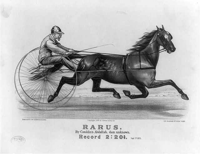 Rarus: by Conklins Abdallah, dam Unknown, record 2:20 3/4, Sept. 1st 1875