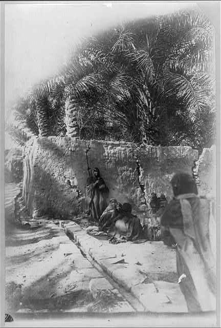 Scene in a desert oasis of Al-Gowf, Arabia