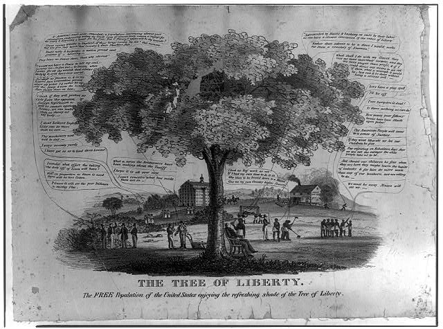 The tree of liberty.  The free population of the United States enjoying the refreshing shade of the tree of liberty