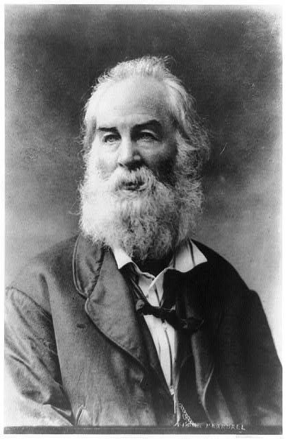 [Walt Whitman, half-length portrait, facing left]