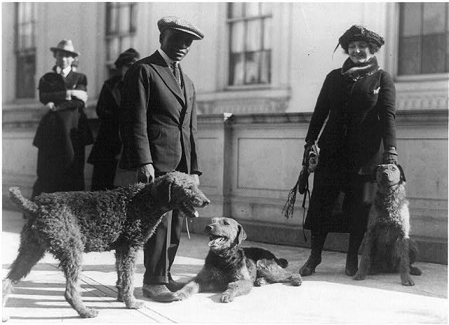 White House kennel keeper and woman with three airedales of Warren G. Harding]