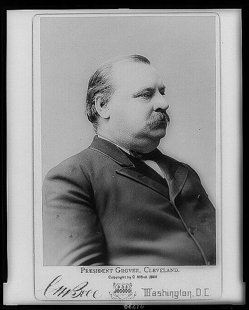 [President Grover Cleveland, half-length portrait, facing right]