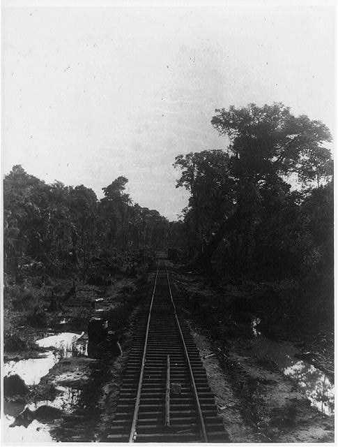 Railroad near Bf.(?) (probably Bluefields) looking toward Greytown
