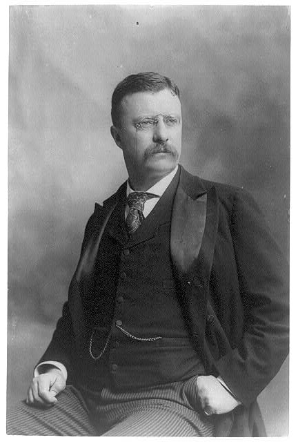 [Theodore Roosevelt, three-quarter length portrait, seated, left hand in pocket, facing right]