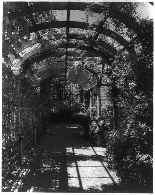 [York Cottage, York Hall, York Co., Virginia, interior of arbor]