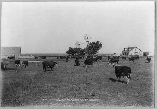 JA Ranch, White Deer Division, N. Stake, Plains