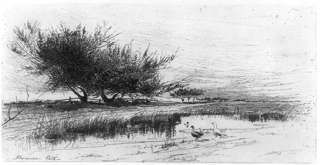 [Landscape with ducks]
