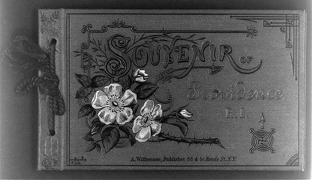 [Color cover of album Souvenir of Providence, R.I.; illus. with flowers on thorny branch]