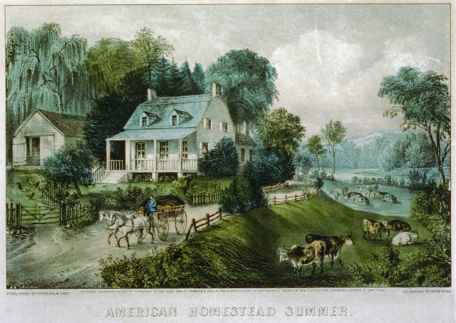 American homestead summer