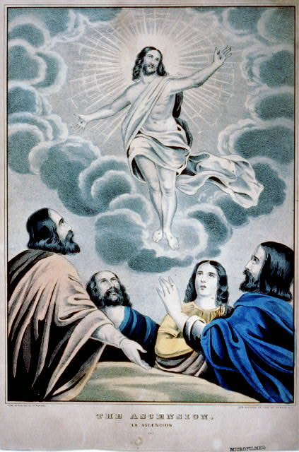 The Ascension / La Ascencion