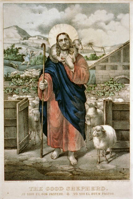 Good shepherd Je suis el bon pasteur = Yo soy el buen pastor.