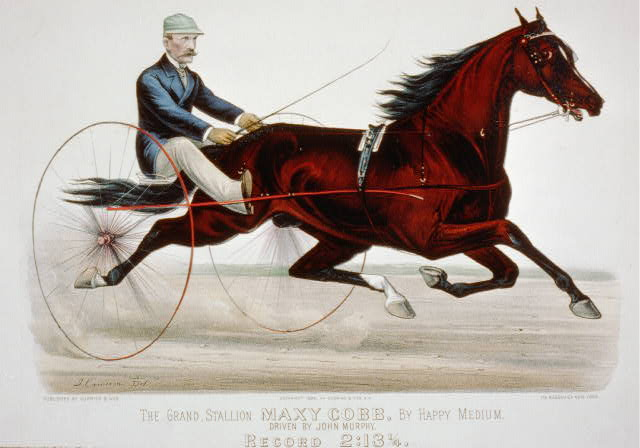 The grand stallion Maxy Cobb, by Happy Medium: driven by John Murphy