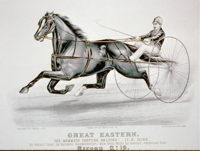 Great Eastern: the mammoth trotting gelding: 17.2, high