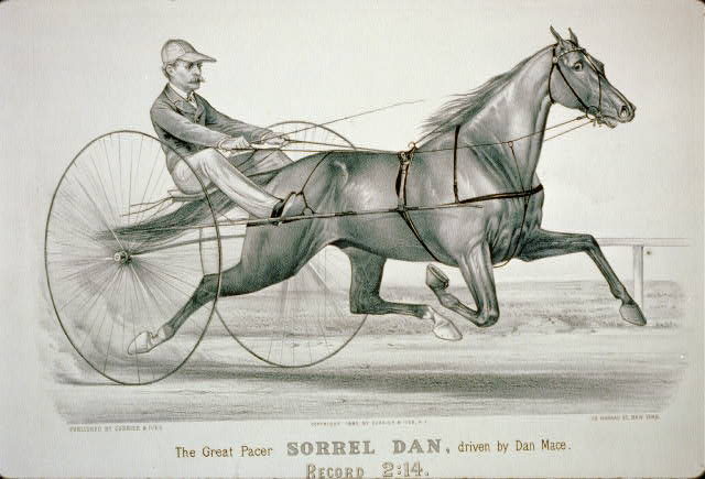 The great pacer Sorrel Dan, driven by Dan Mace