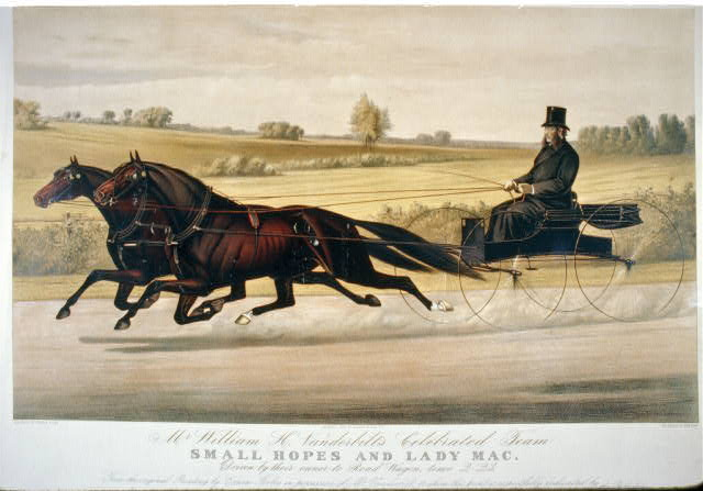 Mr. William H. Vanderbilt's celebrated team Small Hopes and Lady Mac: driven by their owner to road-wagon, time 2:23