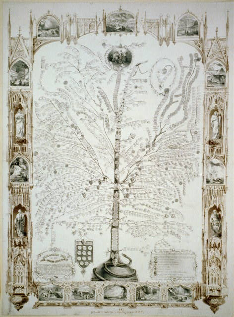 Genealogical tree of our lord & savior Jesus Christ