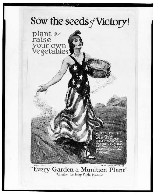 Sow the seeds of victory! Plant & raise your own vegetables
