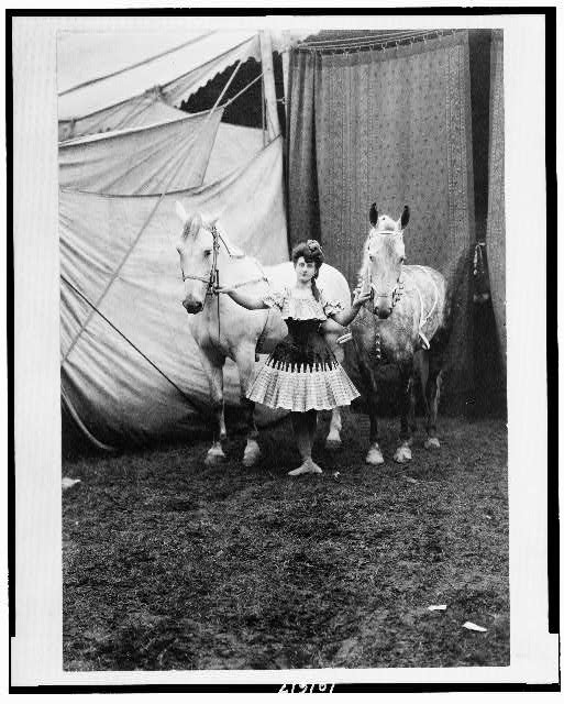 [Bareback rider standing between two horses outside circus tent]