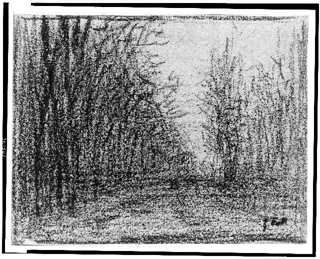 [Roadway with trees]