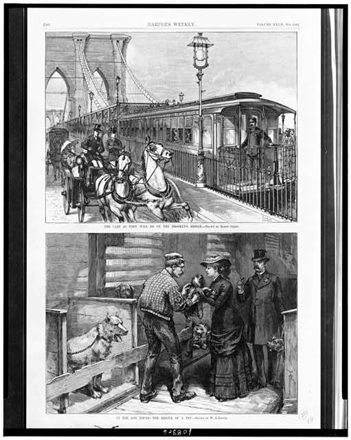 The Cars as they will be on the Brooklyn Bridge / drawn by Harry Ogden.  At the dog pound - the rescue of a pet / drawn by W.A. Rogers