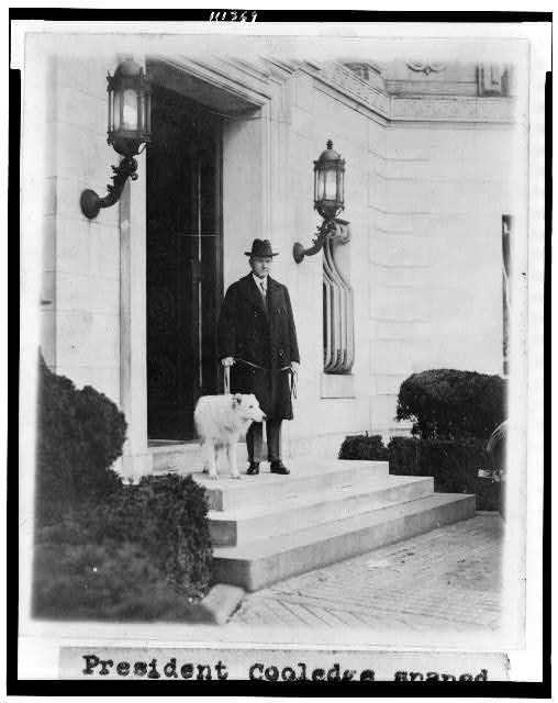 [President Coolidge, full-length portrait, facing slightly right, standing on steps of the Patterson home, with one of the family's dogs]