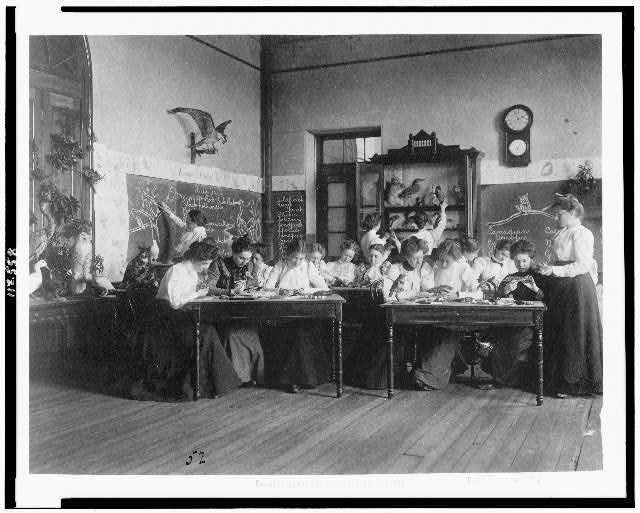 [Young women in Washington, D.C. Normal School classroom studying birds]