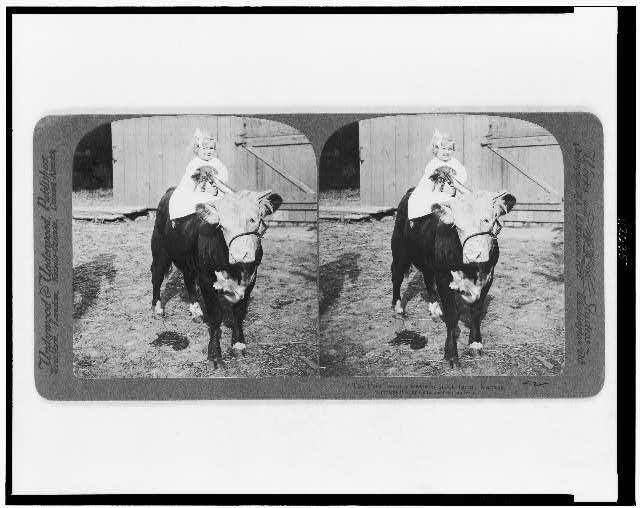The pets--on a western stock farm, Kansas