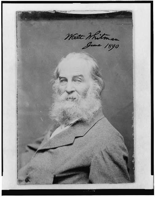 [Walt Whitman as an old man, half-length portrait, seated to the left, facing front]