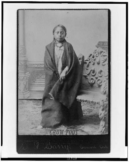 Crow Foot (Sitting Bull's son)