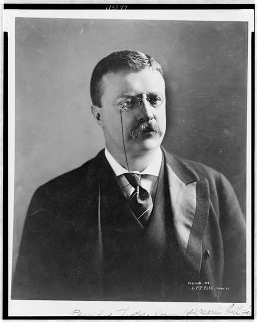 President Theodore Roosevelt (nearly full face)