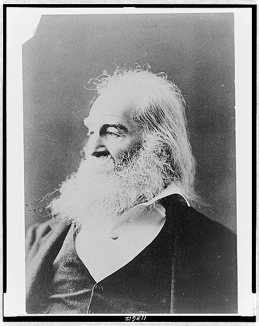 [Walt Whitman, head-and-shoulders portrait, facing left]