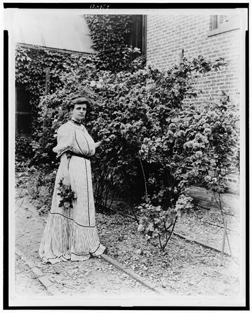 [Frances Benjamin Johnston, full-length portrait, standing in her garden, by rose bushes, with some flowers in her hand, facing slightly right]