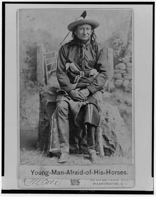 Young-Man-Afraid-of-His-Horses