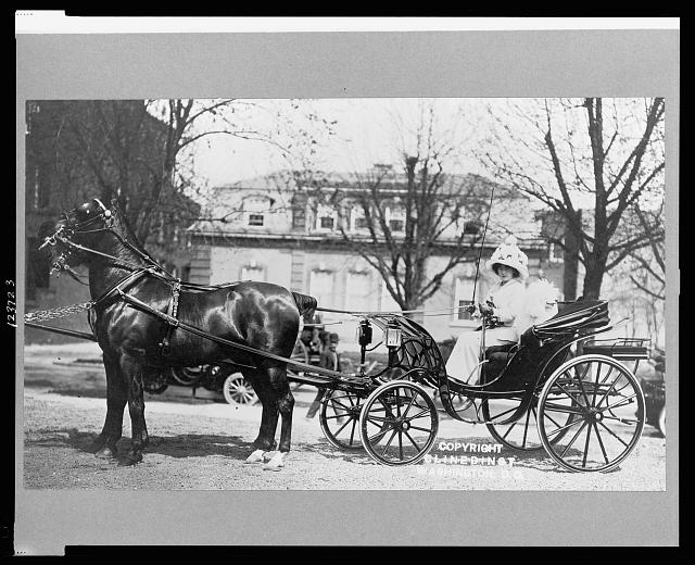 [Evalyn Walsh McLean driving horse-drawn carriage]