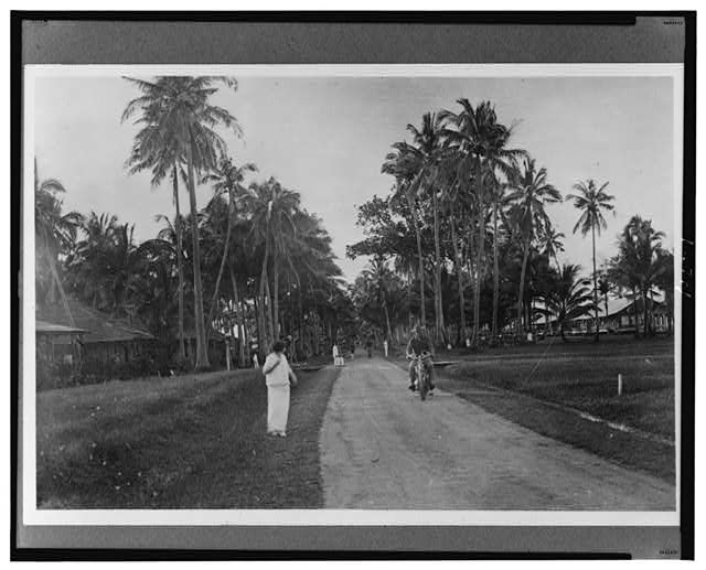 Calboyoz - South Road, Samor [i.e., Samar], Philippine Islands