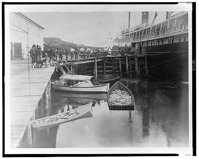 [The expedition vessel, George W. Elder, at dock possibly in Sitka, Alaska, and two small boats loaded with fish in the foreground, 1899]