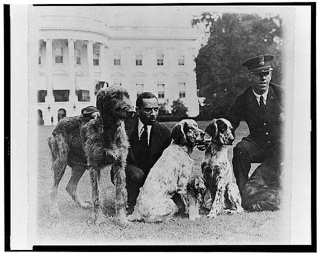 P.E. Allen of the White House police force and Harry Waters with some of the White House dogs