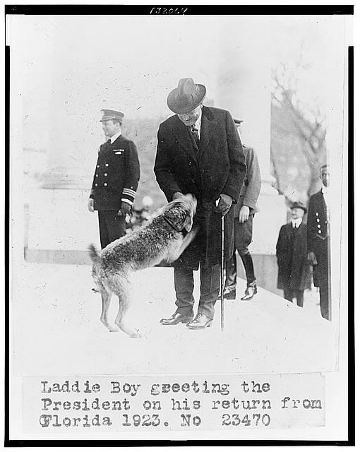 Laddie Boy greeting the president on his return from Florida