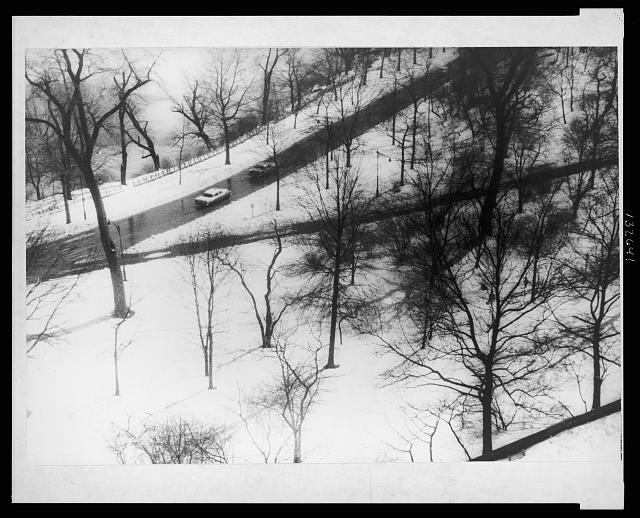 [View of Central Park from apartment 9D, 146 Central Park West, New York City]